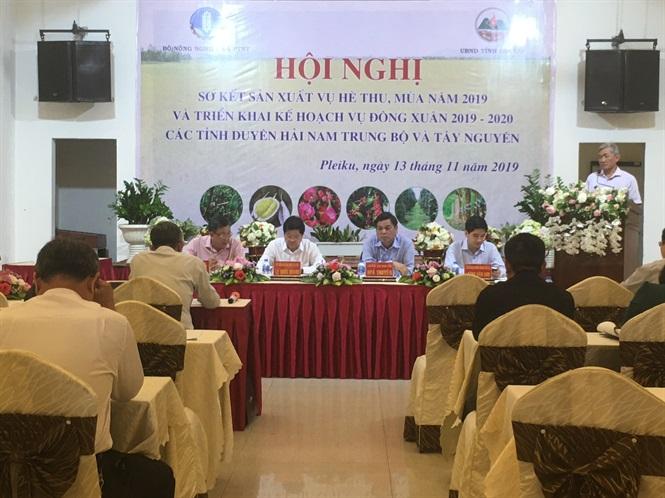 Nam Trung bộ, Tây Nguyên: Trên 17.000 ha cây trồng bị hạn