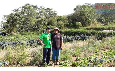 Nông nghiệp hữu cơ: Triển vọng, thách thức và giải pháp