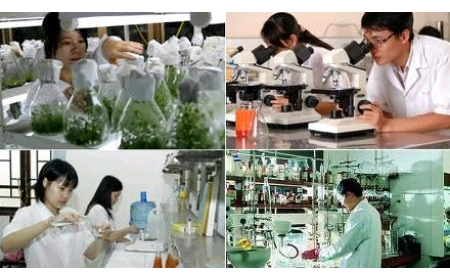Nhiều chính sách ưu đãi doanh nghiệp khoa học và công nghệ