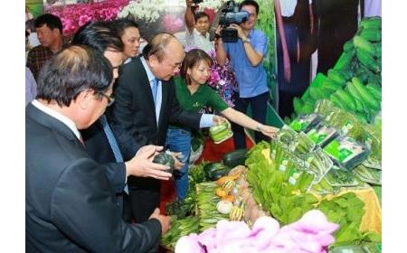 Nhà nước tạo lập tiền đề phát triển nông nghiệp công nghệ cao ở Việt Nam