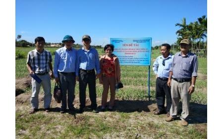 """Kiểm tra tiến độ đề tài: """"Nghiên cứu ứng dụng tiến bộ kỹ thuật trồng tỏi trên vùng đất cát tại xã Hòa Thắng, huyện Bắc Bình, tỉnh Bình Thuận"""" đợt 2 năm 2020"""