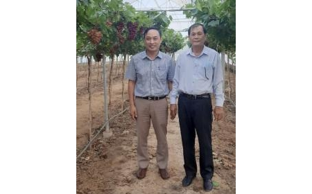 Lãnh đạo huyện ủy Ninh Sơn Thăm, chúc Tết Viện Nghiên cứu Bông và Phát triển Nông nghiệp Nha Hố